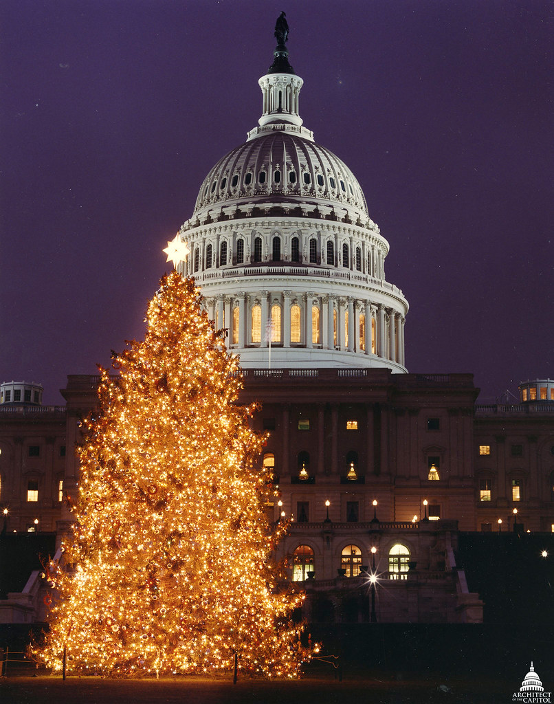 1997 us capitol christmas tree by uscapitol