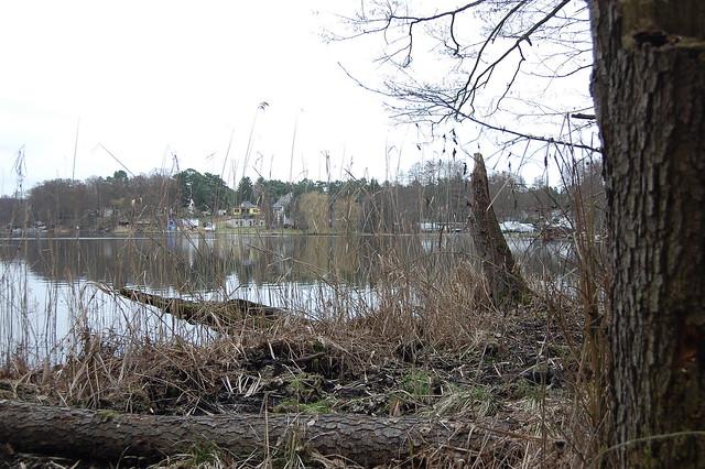 Bild: Mollensee im trüben Märzwetter. Am Anderen Ufer sind ein paar Häuser