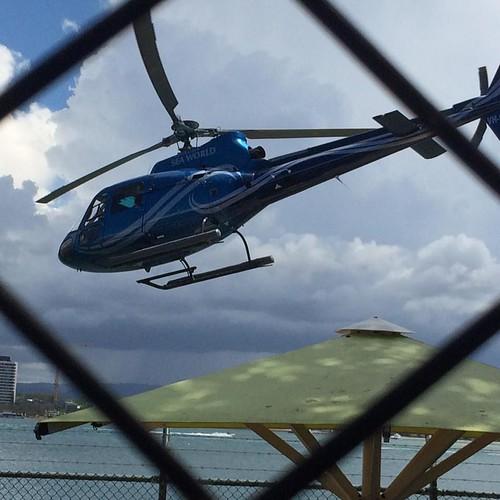 Seaworld helicopter