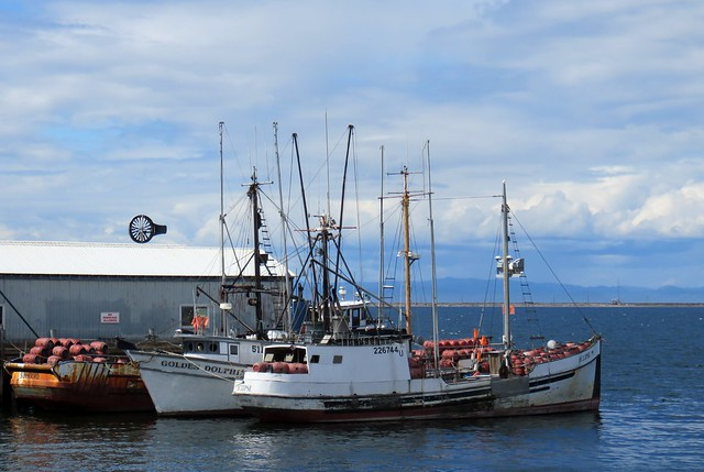 Fishing boats in Port Angeles