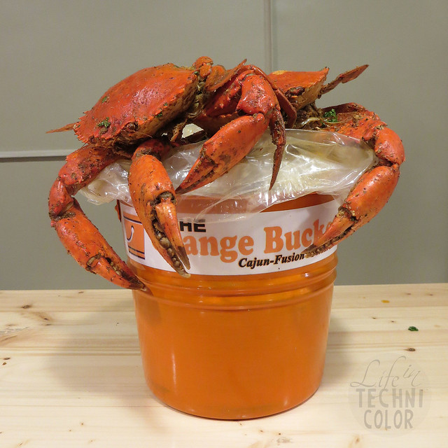 The Orange Bucket