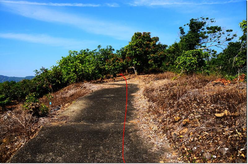 頂湖山稜線登山口(行車終點)