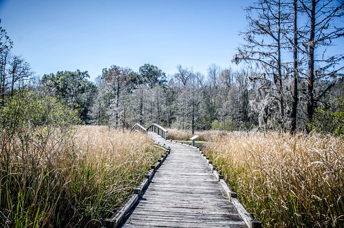 Old Santee Canal Park-23