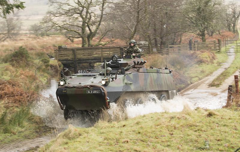 Armée Irlandaise/Irish Armed Forces - Page 2 33150543762_a8584240e0_c