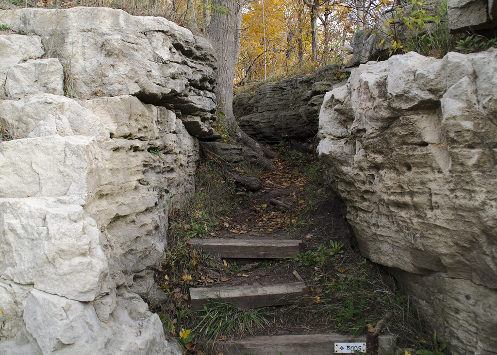 Climbing up the stairs at the Bruce Trail near Hilton Falls