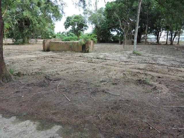 由上圖對照下圖(右後側)就是這次被破壞的次生林原來樣貌。土撥鼠提供