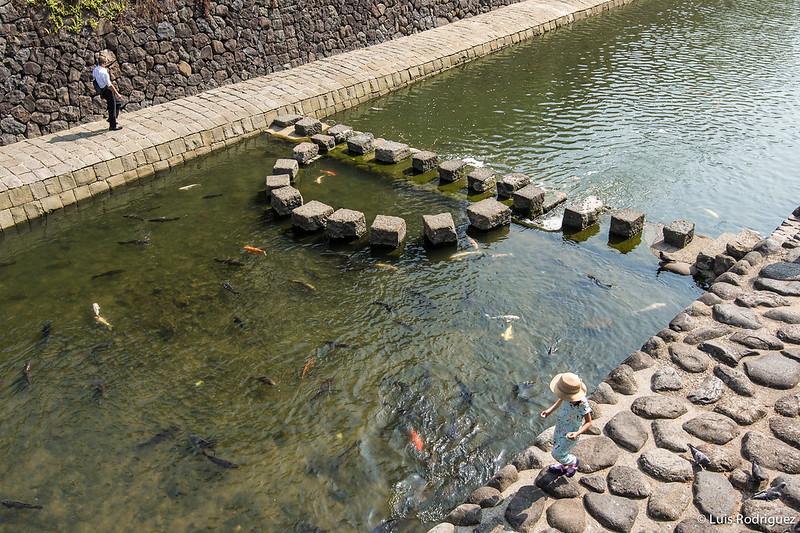 Puentes-de-Nagasaki-48