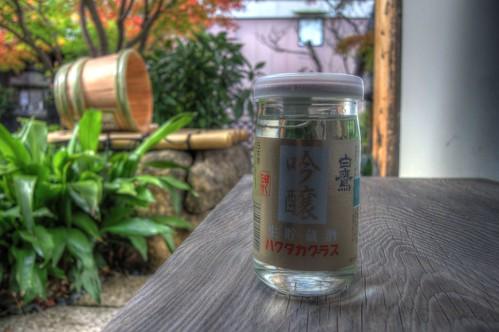 'HAKUTAKA' at Nishinomiya on NOV 29, 2016 (27)