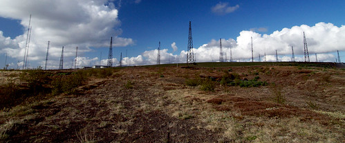 The Antenna Forest | by arnitr