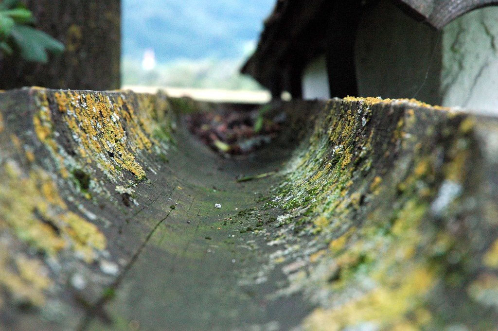 old wooden gutter dachrinne this photo is a part of. Black Bedroom Furniture Sets. Home Design Ideas
