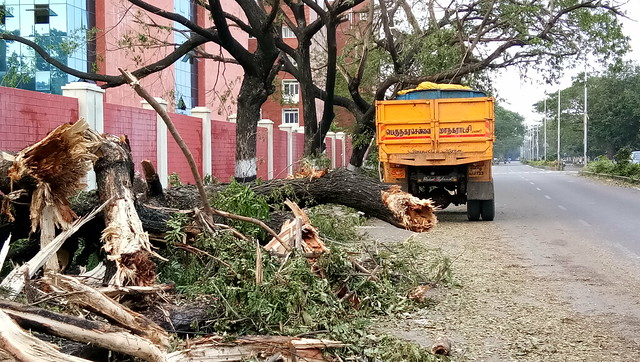 Corporation workers are now faced with the mammoth task of setting the city straight after such unprecedented damage. While arterial roads were cleared out quickly to ease traffic congestion, fallen trees lay across many inner roads and avenues of most residential and business neighbourhoods in the city.