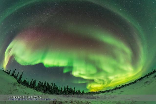 Auroral Arcs #2 (January 27, 2017)