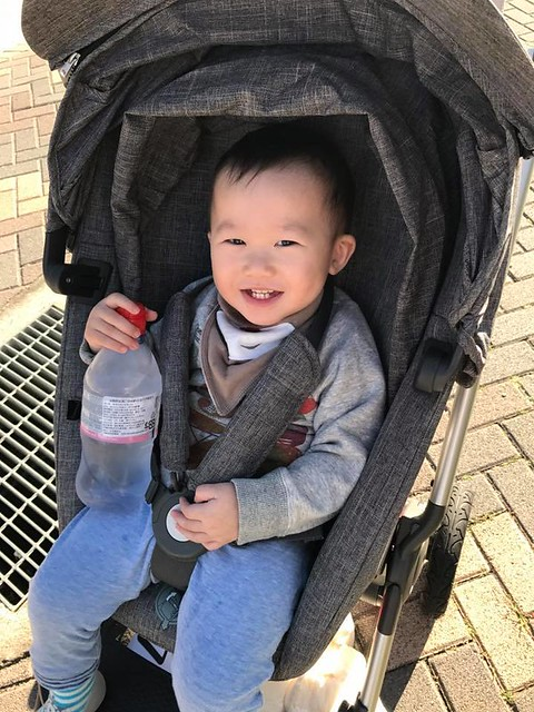 【小安比日記】終於會拍拍手了的1歲5-6個月