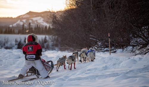 Yukon Quest (c)