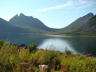 Gryllefjord 1