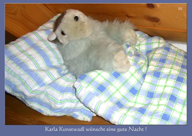 Schlafenszeit - Karla Kunstwadl wünscht eine gute Nacht ... Foto: Brigitte Stolle, Mannheim