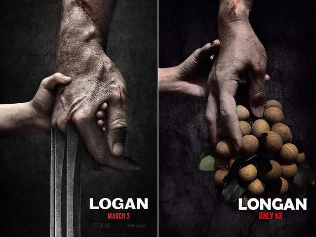 LOGAN vs Longan