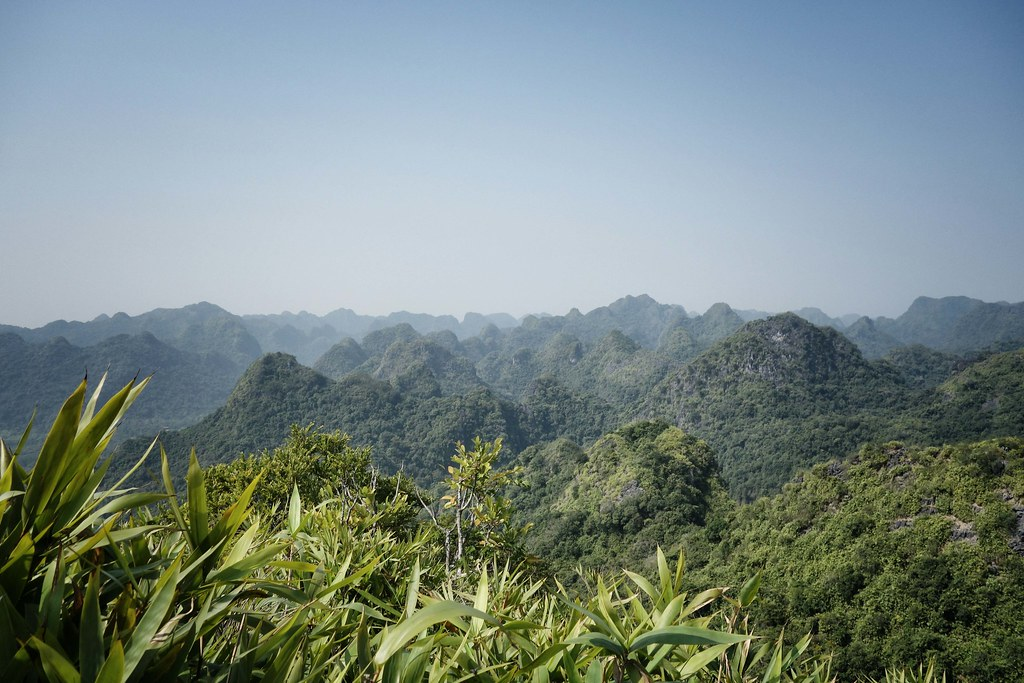 Cat Ba National Park - Ngu Lam Peak 1