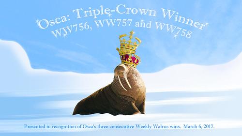 WW758 Osca-s Triple-Crown