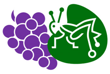 St. Urho's Grapes and Grasshopers