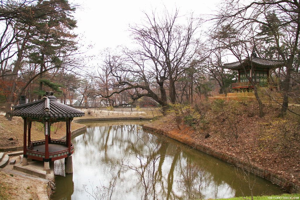 33489384566 3922643a59 b - Seoul-ful Spring 2016: Greeting the first blooms at Changdeokgung Palace