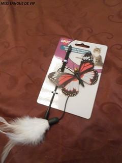 Jouet canne papillon Spot