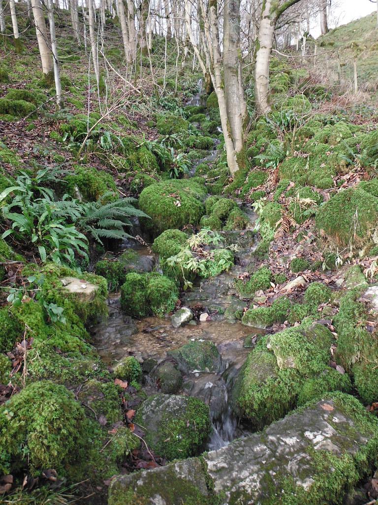 Clapham Nature Trail 16