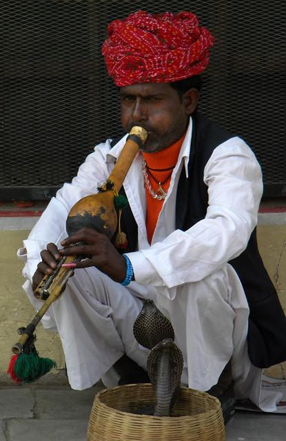 A Snake Charmer in Jaipur, India
