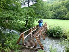 Auf einer der Lieserbrücken