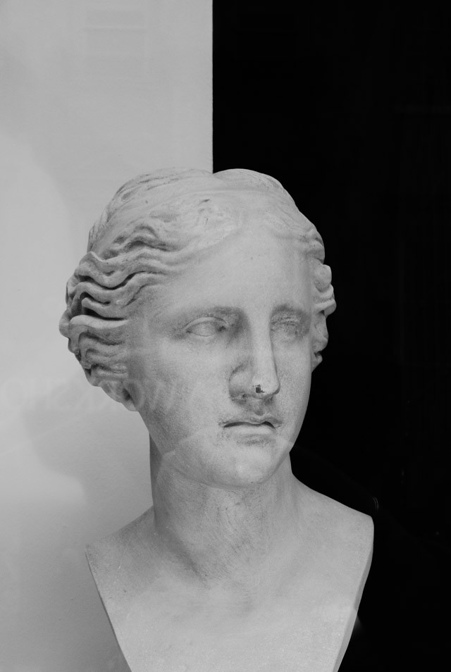 black and white bust in shop window