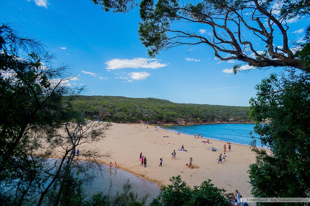 NSW自由行︱WATTAMOLLA BEACH.潟湖與沙灘的奇妙地型