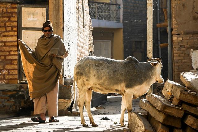 At an alley in the morning, Jaisalmer, India ジャイサルメール 朝の路地