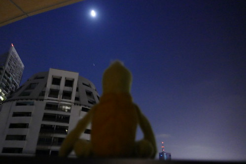 Swami & the moon tonight- Bangkok
