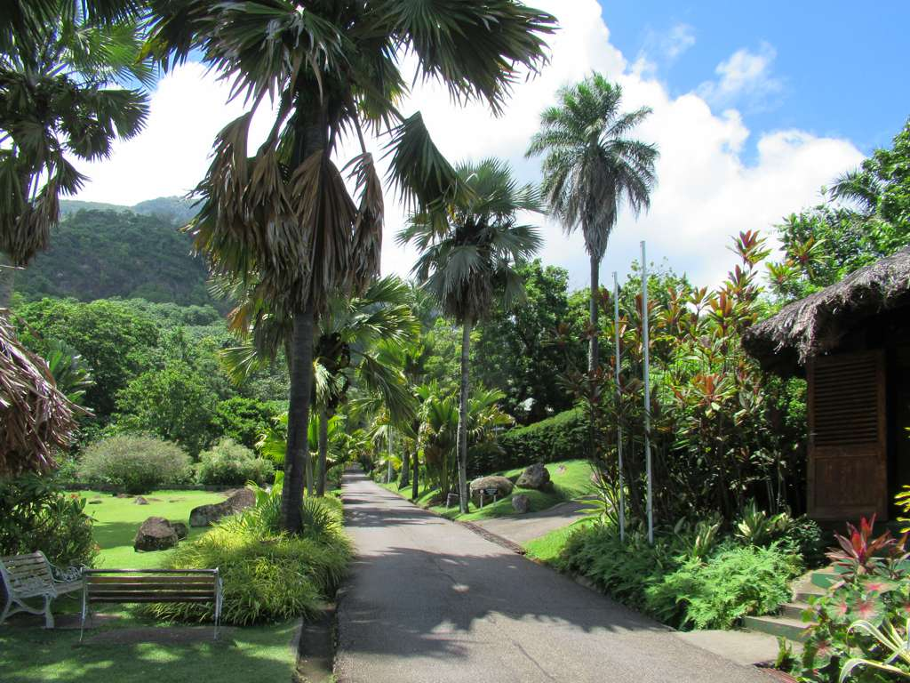 family friendly activities in Seychelles -Botanical Gardens