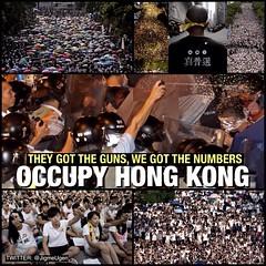 dan_hongkong_tanghoa02