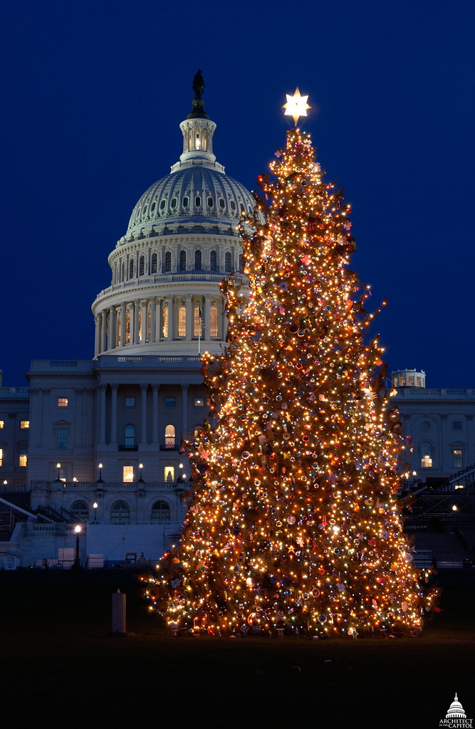 2004 us capitol christmas tree by uscapitol
