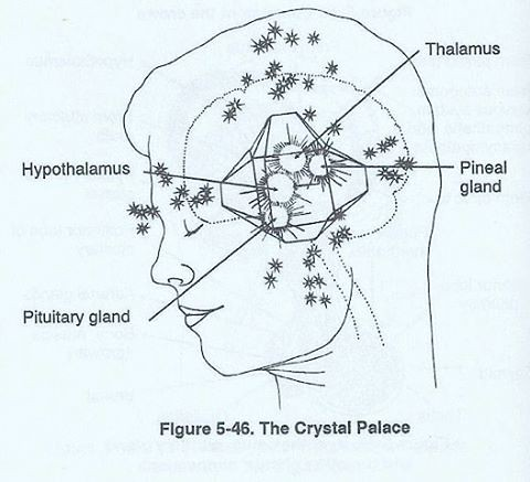 The pineal gland, or third eye, is located in the geometri… | Flickr