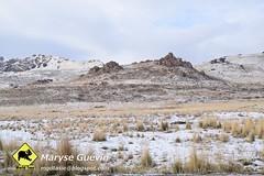 Antelope islande Utah