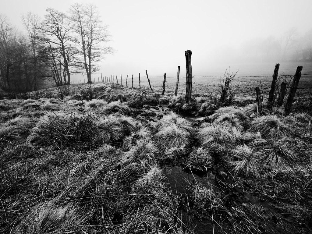 Clôturer l'hiver en Auvergne. 33085175141_016d457855_b