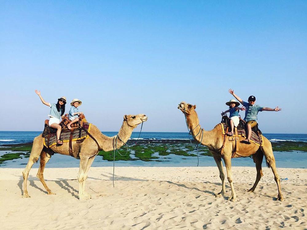 3-camel-via-dreythan