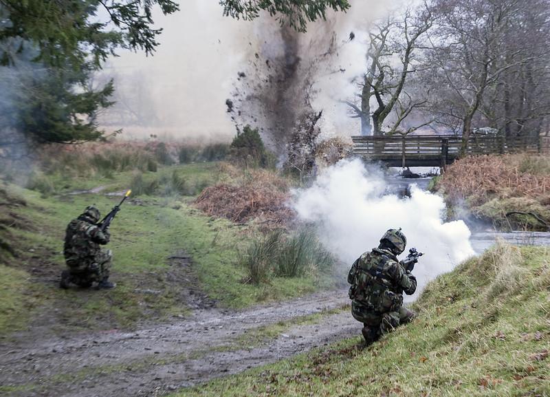 Armée Irlandaise/Irish Armed Forces - Page 2 32923857400_8ea7ca9d57_c