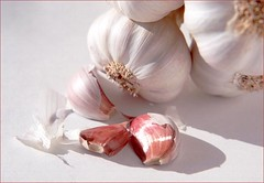 Garlic | by Norma1