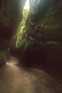 Witch's Cavern - Dismals Canyon | by Rob Fincher