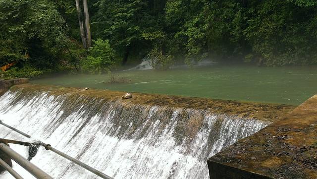 龍潭水源地的清澈水質。攝影:詹嘉紋。