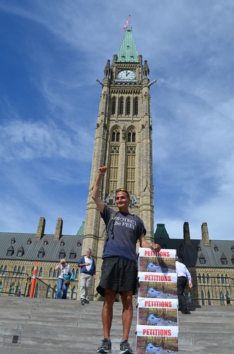 Caribou Legs on Parliament Hill