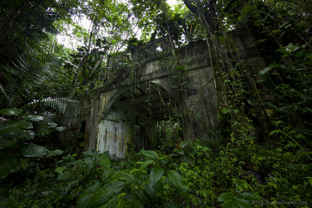 Abandoned Building El Yunque National Forest Puerto Ric