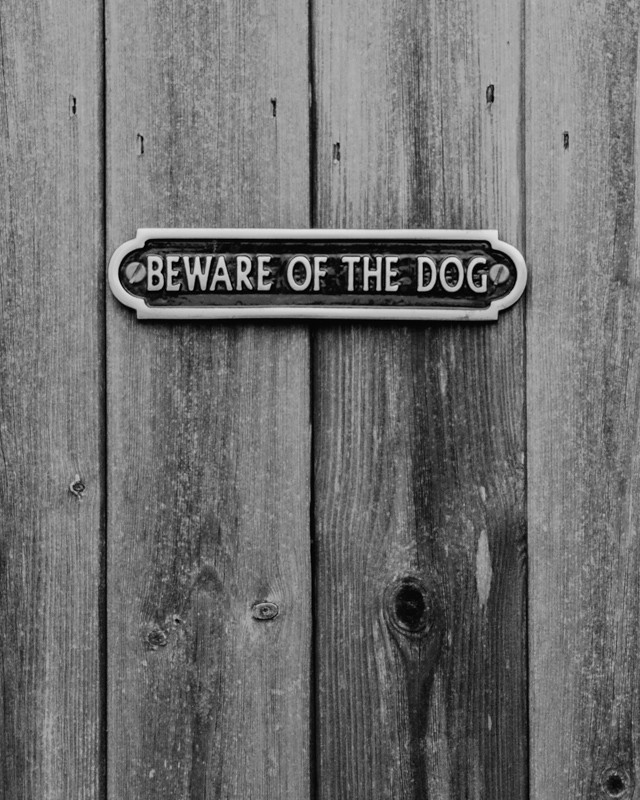 black and white photo of beware of the dog sign