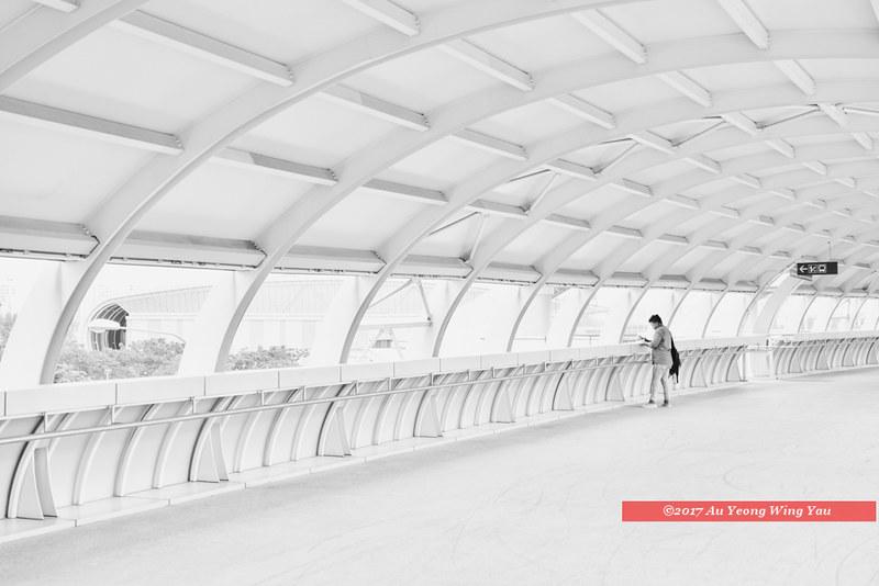 Singapore 2017: Life Among Geometry