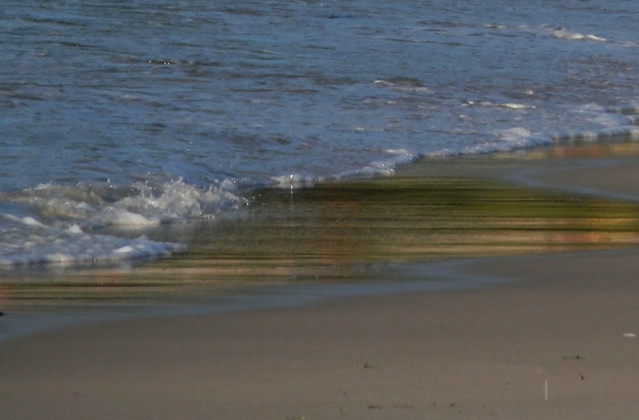 Un brillo en una ola