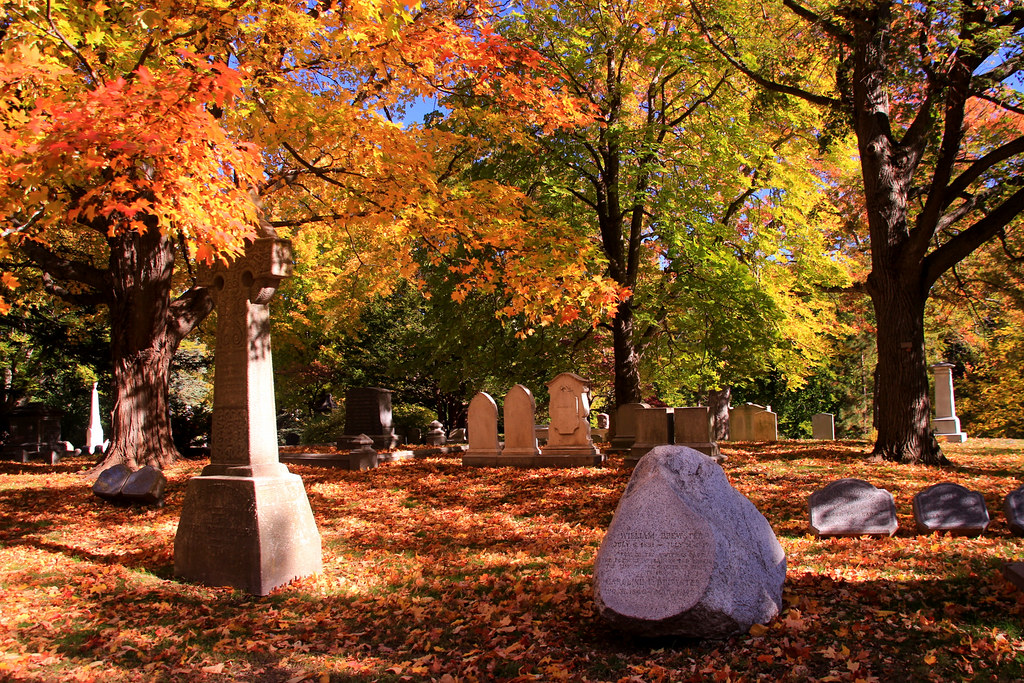 Mt Auburn Cemetery, Cambridge, MA